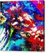 Digital Software Art Acrylic Print