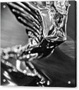 1938 Cadillac V16 Hood Ornament Acrylic Print