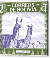 1939 Bolivia Llamas Postage Stamp Acrylic Print