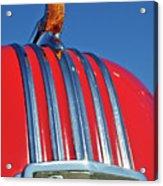 1951 Pontiac Chief Hood Ornament 2 Acrylic Print by Jill Reger