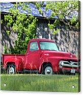 1955 Ford F100 Truck Acrylic Print