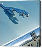 1995 Jaguar Xj6 Sedan Hood Ornament Acrylic Print by Jill Reger