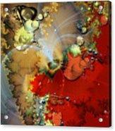 1999 12 2 Acrylic Print