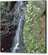 1b6353 Falls On Sonoma Mountain Acrylic Print