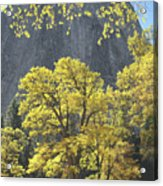 1m6610 Middle Cathedral Rock In Autumn Acrylic Print
