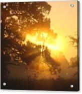 1.sunrise Acrylic Print