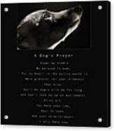 A Dog's Prayer  A Popular Inspirational Portrait And Poem Featuring An Italian Greyhound Rescue Acrylic Print