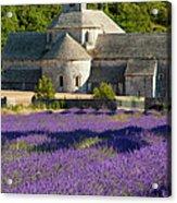 Abbaye De Senanque Acrylic Print