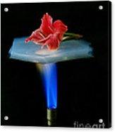 Aerogel, Synthetic Ultralight Material Acrylic Print
