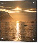 Antarctic Sunset Acrylic Print