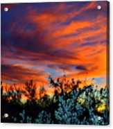 Arizona Sky Acrylic Print