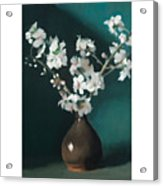 Australian Almond Blossom Acrylic Print