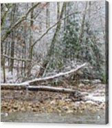 Autumn Snow Williams River  Acrylic Print