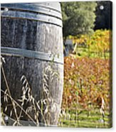 Barrel In The Vineyard Acrylic Print
