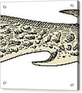 Bronze Age Barbed Point Harpoon Acrylic Print