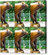 Bronze Statue Sculpture Of Bear Clapping Fineart Photography From Newyork Museum Usa Fineartamerica Acrylic Print