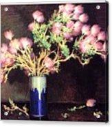 bs-flo- Joseph H Sharp- Apache Plume Joseph Henry Sharp Acrylic Print
