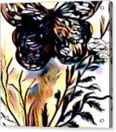 Butterfly Sketch Acrylic Print