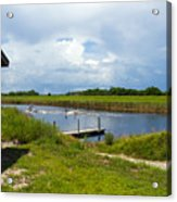 C54 Canal In Florida Acrylic Print