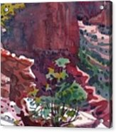Canyon View Acrylic Print