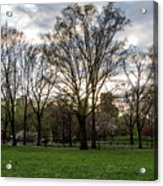 Central Park Views  Acrylic Print