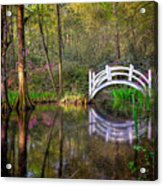 Charlston Sc - Magnolia Plantations And Garden Acrylic Print