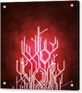 Circuit Board Acrylic Print by Setsiri Silapasuwanchai