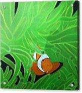 Clownfish Acrylic Print
