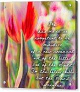 2 Corinthians 3 6 Acrylic Print