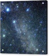 Cygnus Constellation Acrylic Print