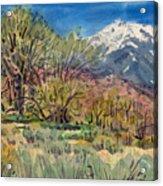 East Of The Sierra Nevadas Acrylic Print