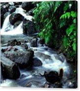 El Yunque Waterfall Acrylic Print
