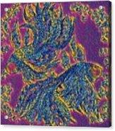 2 Electric Fish Acrylic Print