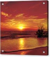 Evening Beach Acrylic Print