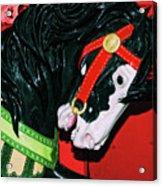 Fiery Stallion Acrylic Print