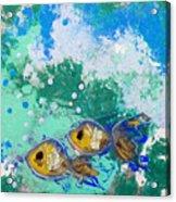 2 Fish Acrylic Print
