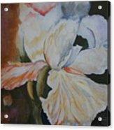 Fleur-de-lis Acrylic Print