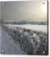 Frozen Britain Acrylic Print by Angel  Tarantella