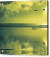 Fullmoon Over The Ocean Acrylic Print