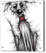 Fuzzy Dog Acrylic Print