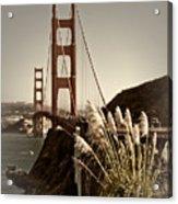 Golden Gate Bridge Acrylic Print by Melanie Viola