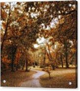 Golden Path Acrylic Print