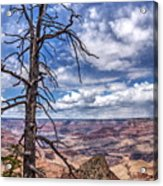 Grand Canyon National Park - South Rim Acrylic Print