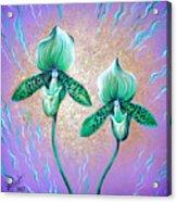 2 Green Orchids. Sunrise Acrylic Print