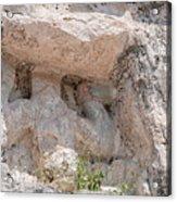 Grupo Nohoch Mul At The Coba Ruins  Acrylic Print