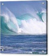 Hawaiian Winter Waves Acrylic Print