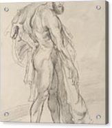 Hercules Acrylic Print