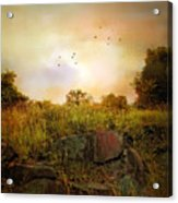 Hilltop Meadow Acrylic Print