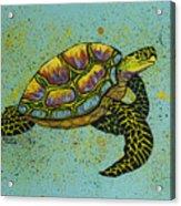 Honu Acrylic Print