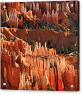 Hoodoos Of Sunset Point In Bryce Canyon Acrylic Print